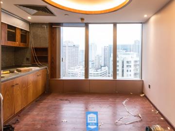 发展中心大厦 495平米 楼下地铁可备案 中层业主直租