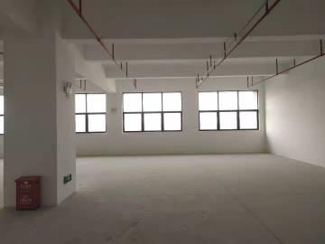 康淮电商中心 2250平米 价格便宜业主直租 低层可租整层