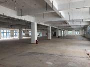 1631平米鼎海双创港 高层可备案 电梯口业主直租