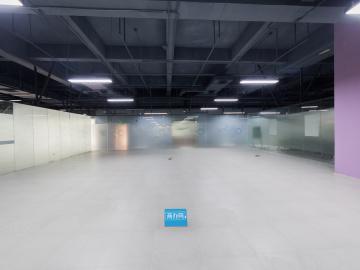 银星工业园 530平米 可备案 低层
