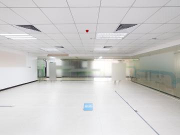 银星工业园 121平米 可备案精装 中层