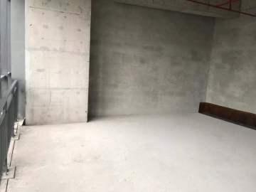 可备案 长江中心 118平米业主直租 低层配套完善