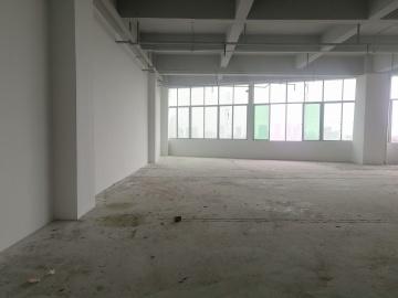 龙景科技园 245平米 优选办公 高层