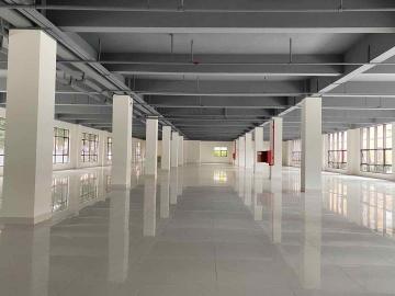 近地铁 华丰智谷福海科技产业园 2000平米可备案 低层可租整层