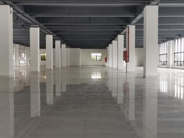 华丰智谷福海科技产业园 285平米 楼下地铁可备案 低层