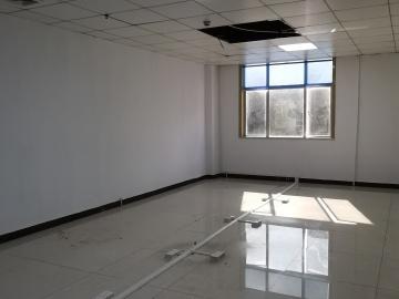 望成大厦中层 130平米精装 随时看房优选办公