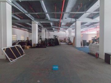 深圳舞美产业园低层 2938平米地段优越 房源真实优质房源写字楼出租