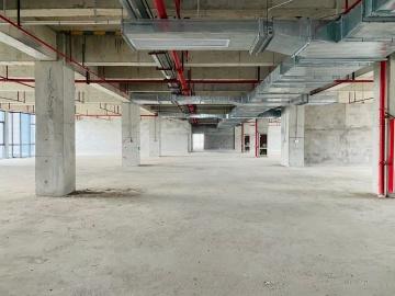 宝新科技园 205平米 高使用率随时看房 低层办公好房